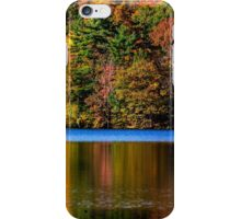 Autumn Colours in the Park iPhone Case/Skin