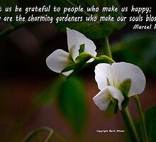Give thanks to people who make you happy. by Bevin Allison
