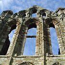 Whitby Abbey by monkeyferret