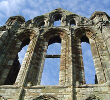Whitby Abbey by monkeyferret