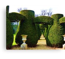 Topiary 2 Canvas Print