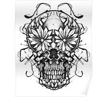 Mirror skull Poster