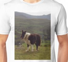 Indy at the Top Unisex T-Shirt