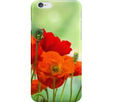 Poppy Display iPhone Case/Skin