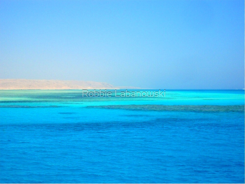 The Blue Red Sea by Robbie Labanowski