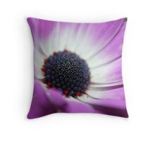 purple and white daisy Throw Pillow