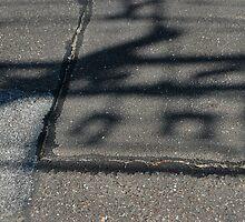 it is written in the street by Jeff Stroud