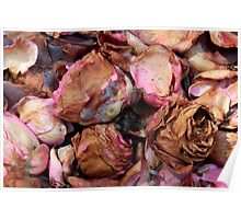Petals & buds 7160 Poster