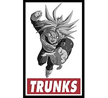 Trunks Obey Style Photographic Print