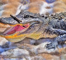 Alligator by Savannah Gibbs