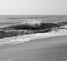 Waves Crashing Along the Shore by amykaren