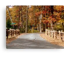 Country Road   ^ Canvas Print