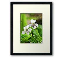 Two Wildflowers - Bridgton,  Maine Framed Print
