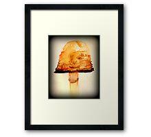 Water color mushroom. Framed Print