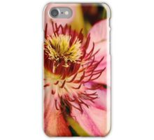 Pink clematis from the garden show iPhone Case/Skin