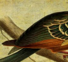 Whirring Pheasant Springs Sticker
