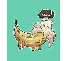 Banana Kitty  Photographic Print
