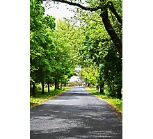 Hill End Country Road Photographic Print