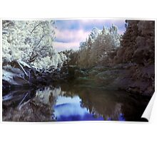 Wairoa River infrared Poster