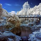 Wairoa River infrared 2 by Paul Mercer