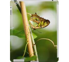 Malachite butterfly iPad Case/Skin