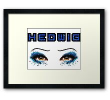 Darren Criss Hedwig Eyes Glitter Blue Flat Text 2 Framed Print