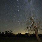 Starry Nights by Arthur Koole