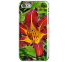 The Lady is a Tramp iPhone Case/Skin