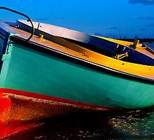 Coota Boat Apres Storm by Ronald Rockman