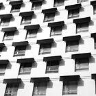 Black Windows by Karem Nunez