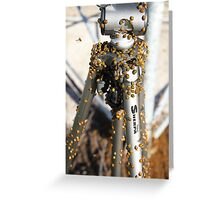 They love a Velbon tripod too! Greeting Card
