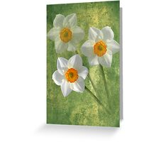 Three For Spring Greeting Card