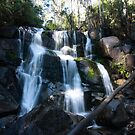Toorongo Falls  by Fiona Kersey