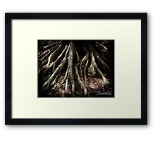 Touching the Earth Framed Print