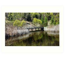 Wetlands in Spring  Art Print