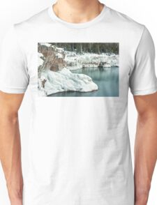 Frozen Lake Shore Unisex T-Shirt