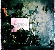 Passion Pop by Benjamin Liew