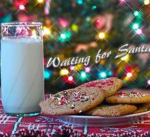 Waiting for Santa by Susan S. Kline