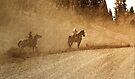 Hit The Dusty Trail by CarolM
