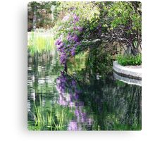 ONE REFLECTION AMONG MANY Canvas Print
