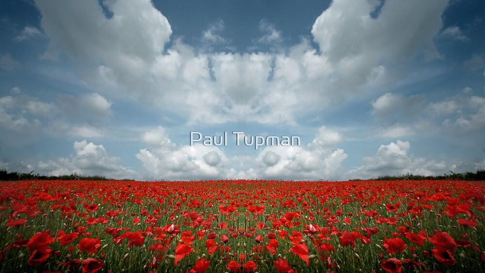 Nowhere Land III by Paul Tupman