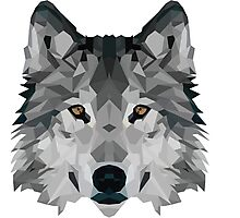 Crystalline Wolf Photographic Print