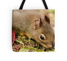 Curious Tree Dweller Tote Bag