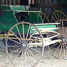 GREEN CARRIAGE by dragonindenver
