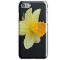 Daffodil Three-Quarter View iPhone Case/Skin