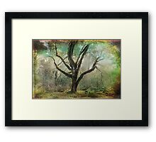 If You Believe... Framed Print
