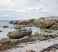 Afternoon, Bay of Fires by Harry Oldmeadow