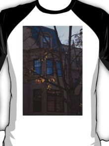 Washington, DC Facades - Dupont Circle Neighborhood  T-Shirt
