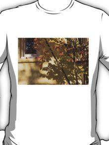 Washington, DC Facades - Dupont Circle Neighborhood - Playing with Shadows T-Shirt