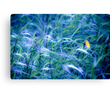 OnePhotoPerDay Series: 111 by L. Canvas Print
